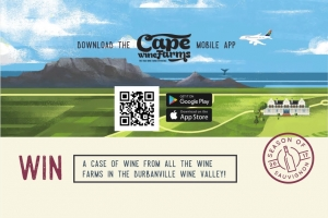 Cape Wine Farms Wineries